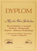 certyfikat i wyróżnienie dla LUCA - oprawa obrazów